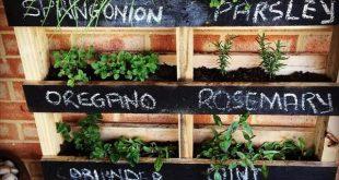 DIY Pallet Vertical Herb Garden: Hanging Planter