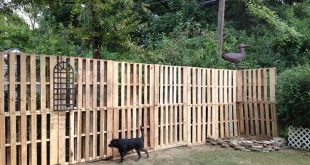 pallett yard fence | Pallet fence w/small plant hanger attached. Back yard parad...