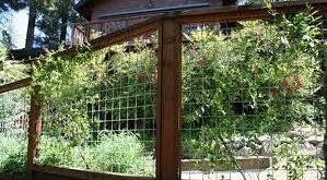 5 Prepared Simple Ideas: Front Yard Fencing Vines modern fencing gate.Rustic Fen...