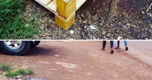 Inspiring DIY Pallet Furniture Ideas